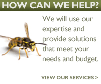 How can we help? We will use our expertise and provide solutions that meet your needs and budget.
